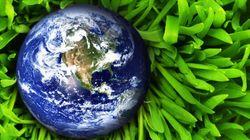 La crise du mouvement environnemental (1/2) - Bruno