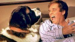 Le chien, le meilleur ami du cinéma