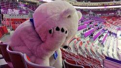 Sotchi 2014: la mascotte pleure la défaite de la
