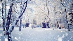 Après la neige... le