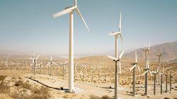 Le développement durable mondial est-il en phase avec la réalité? - Benita