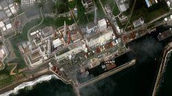 Fukushima: 26 cas de cancer de la thyroïde