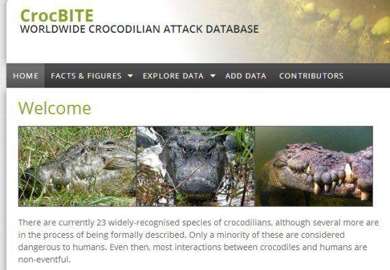 Attaques de crocodiles: un fichier mondial vient d'être