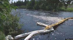 Opération nettoyage des berges de la rivière