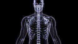 On a découvert une nouvelle partie du corps humain qui va intéresser les joueurs de