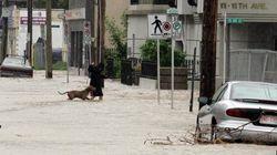 Palmarès météo 2013: pas d'extrême au Québec; inondation historique à