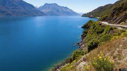 Nouvelle-Zélande : les vins du bout du