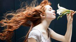 Les 10 catégories d'odeurs les plus