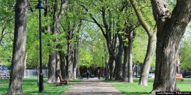 Internet sans fil (Wi-Fi) sera accessible au parc