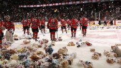 26 000 ours en peluche sur la