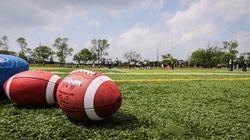 Les forces en présence dans la NFL: Panthers, Vikings, Cowboys et