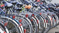 Tour de l'Île: des milliers de cyclistes sous la