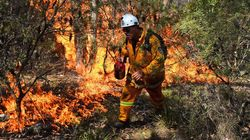 Australie: le combat des pompiers pour empêcher un