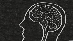 Cerveaux de gauche, cerveaux de droite
