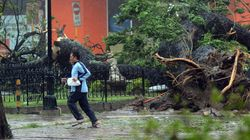 Le cyclone Haiyan aurait fait plus de 10 000 victimes