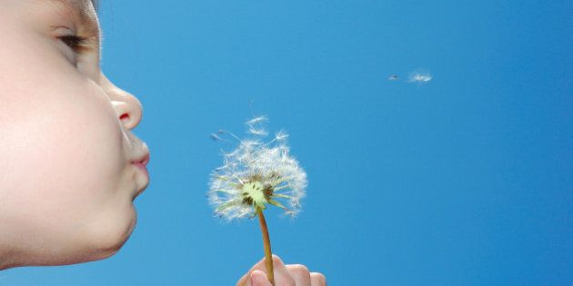 child blowing away dandelion...