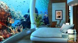 Stressé? Ces aquariums seront parfaits pour vous détendre