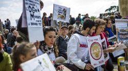Journée de manifestations contre Monsanto et les