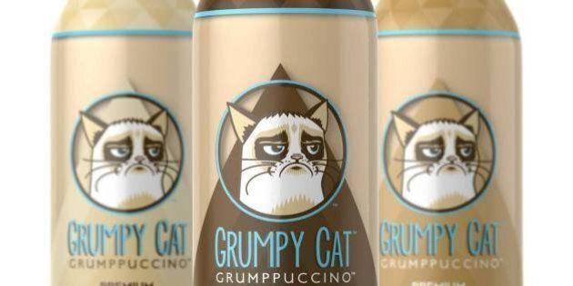 Grumpy Cat a maintenant une boisson à son effigie, le