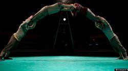 «Face Nord» à Montréal Complètement Cirque : la beauté brute en pleine gueule !