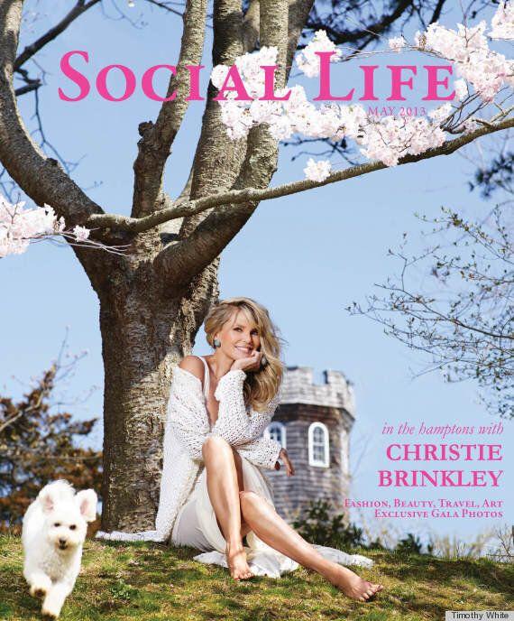 Christie Brinkley, l'ancienne mannequin est toujours aussi splendide en bikini à 59 ans