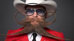 Vous participez à Movember? Le Huff Post veut vous
