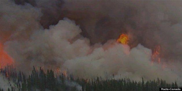 Neuf feux de forêt en activité au