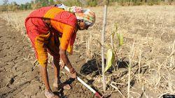 Santé et développement durable: une expérience à