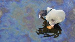 Les résidus de pétrole de Lac-Mégantic entreposés sur la