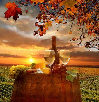 12 vins parfaits pour l'automne et les plats