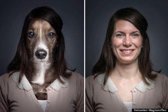 Les animaux de Sebastian Magnani: le photographe immortalise la ressemblance entre chiens et maîtres