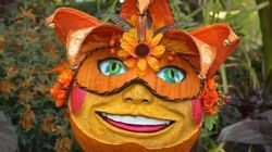 La 28e édition du Grand Bal des citrouilles s'amorce au Jardin
