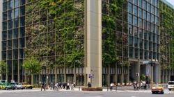 Un jardin vertical sur les murs d'un édifice de Tokyo