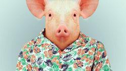 La Ferme des animaux, de l'artiste espagnol Yago Partal