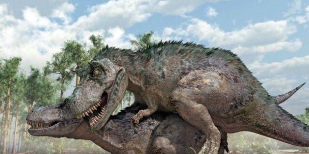 Dinosaures: des relations sexuelles en position du missionnaire pour éviter la castration