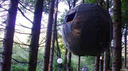La tente dans les arbres, à 16 000