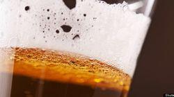 Pourquoi aime-t-on la bière? L'explication