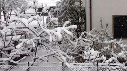 La primavera si fa attendere: pioggia in tutta Italia e in Lombardia neve a bassa