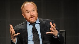 2015 FX WINTER TCA: (L-R) Creator/EP/Writer/Director/Editor/Star Louis C.K.  during the LOUIE panel at the 2015 FX WINTER TCA on Sunday, Jan. 18 at the Langham Hotel in Pasadena CA.  Credit: PGFM/MediaPunch/IPX
