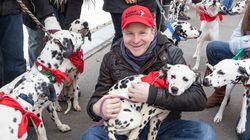 Testé sur des humains: 101 dalmatiens pour la première