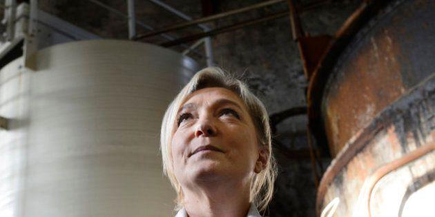 Un Français sur trois «adhère» aux idées du Front national de Marine Le