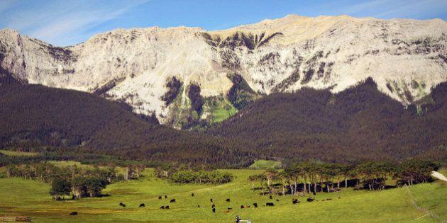 72 heures en Alberta pour découvrir le mode de vie western