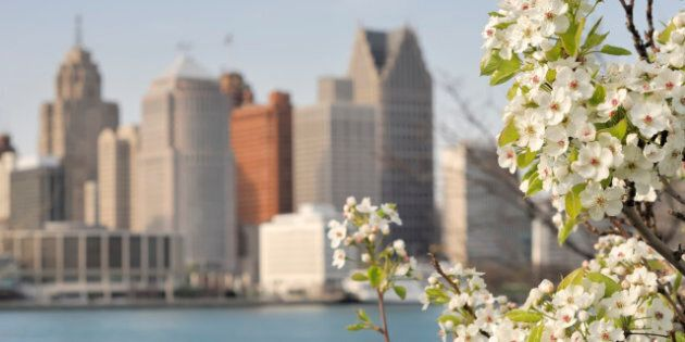 The Detroit Skyline with cherry blossoms in the foreground.