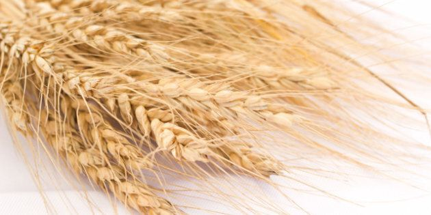 wheat on the