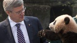 Les hauts et les bas du gouvernement Harper en