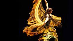 Danse Danse 2013: une programmation variée