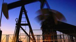 L'Alberta emportée par le désastre du pétrole