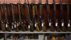 Un petit village du Maine veut rendre les armes à feu