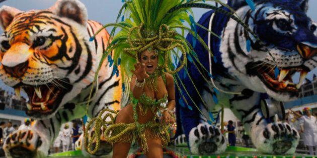 Carnaval 2013: les plus belles images de cette édition à travers le monde
