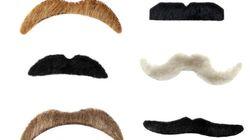 C'est le temps des moustaches, Mo Bros et Mo